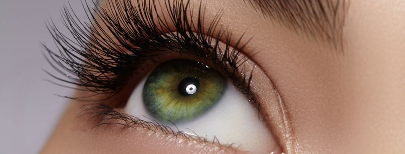 How the Eyelash Growth Cycle Affects Eyelash Extensions